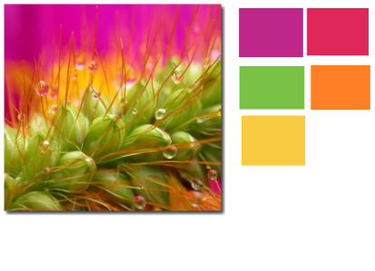 colors 64